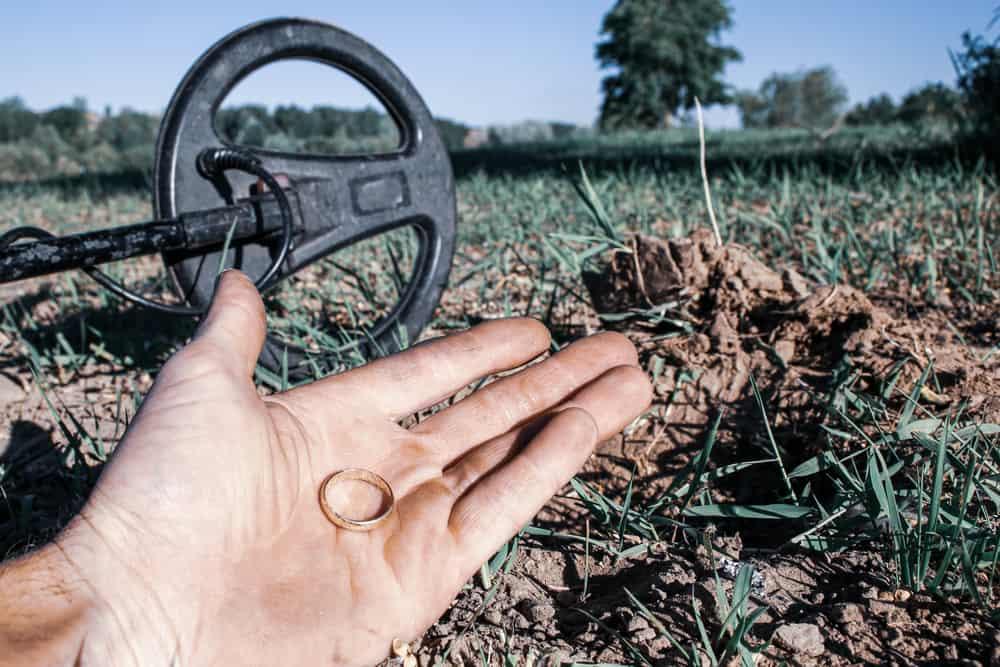 metal detecting in field